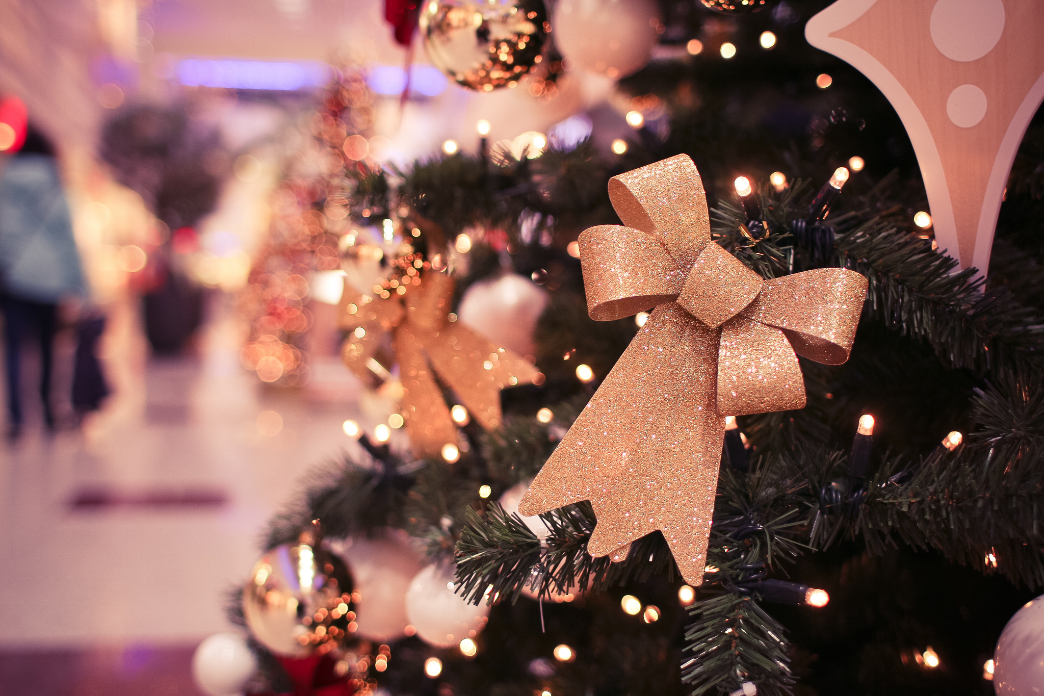 Holiday Happenings Close to Home